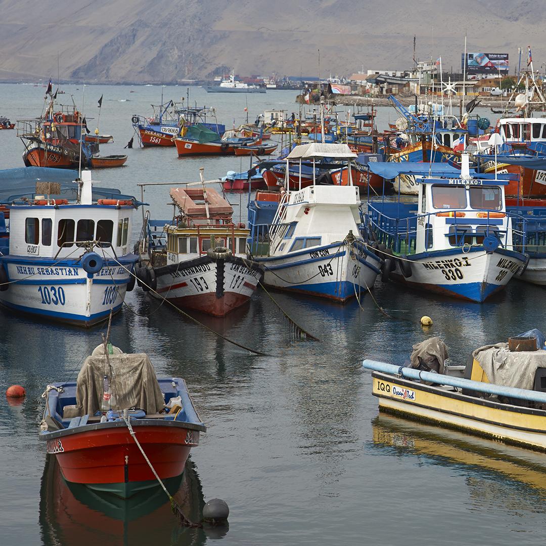 Vista botes de pesca Caleta los Verdes