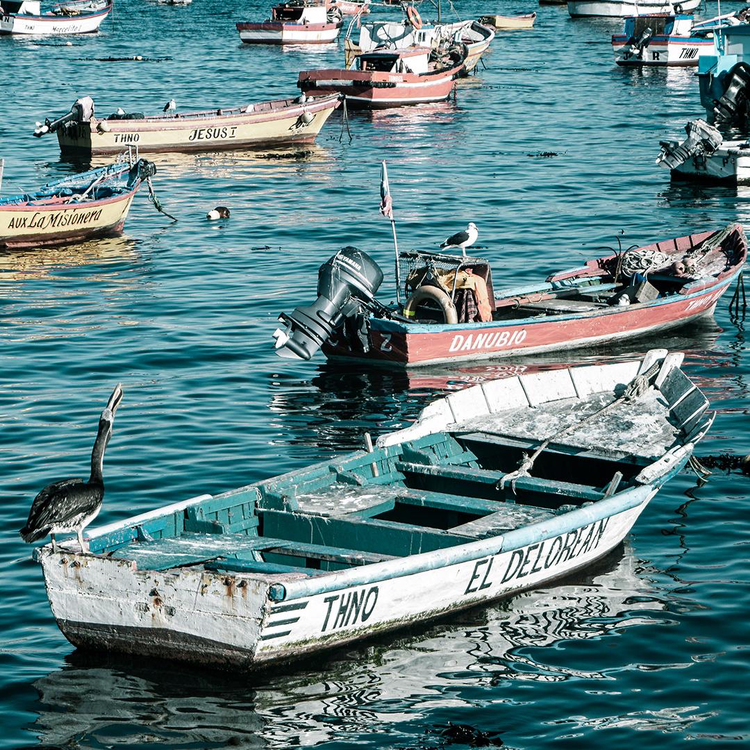 Botes de pescadores estacionados en la bahía